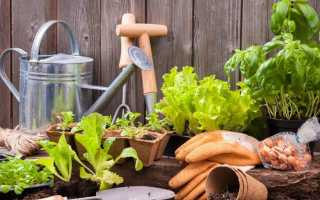 Выбор садовых инструментов