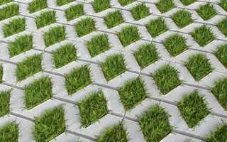 Домашнее изготовление тротуарной плитки