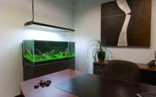 Аквариумы для офисных помещений