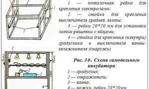 Мини-инкубатор своими руками (чертежи и схемы)